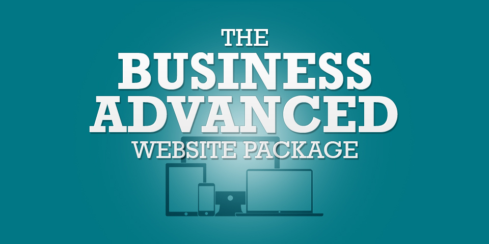 Business Advance Website Package